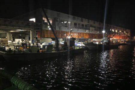 一年ぶりの小田原港